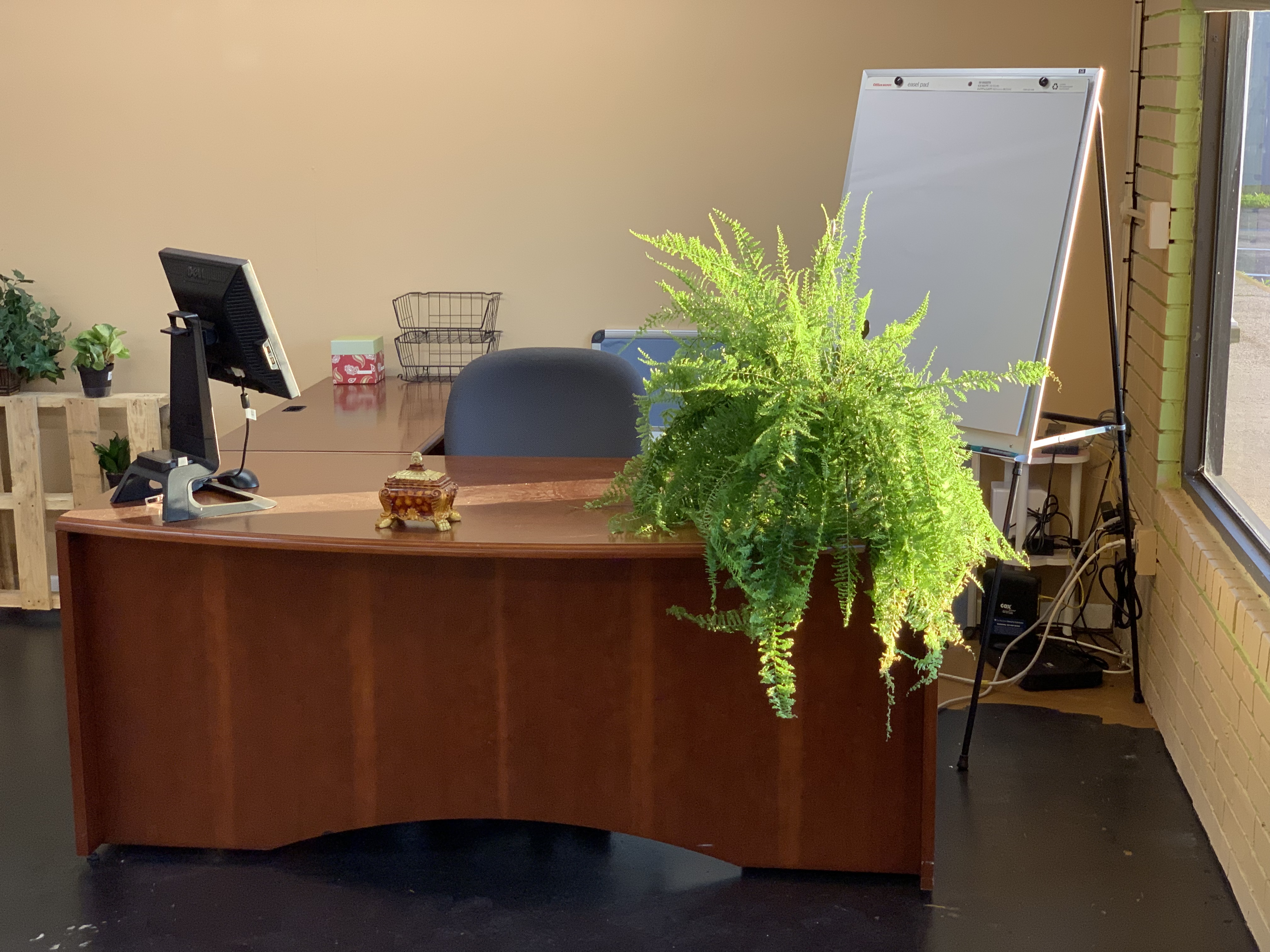 Proximity space Life Towne Center plant desk